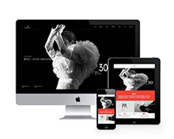 高端广告艺术设计品牌包装类织梦模板