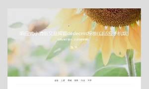 响应小的新鲜文章博客dedecms模板(自适应手机)进行SEO优化