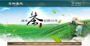 织梦最新开发茶叶基地种植类网站模板(带手机端)+PC+移动端+利于SEO优化