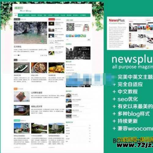 免费购买Wordpress CMS主题:绝对精美的汉化主题NewsPlus