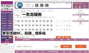 专业服务网站搭建 网站建设 采集修复 源码出售 二次开发 H5公众号游戏