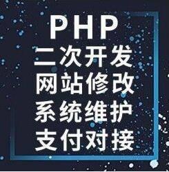 专业服务网站搭建 网站建设 采集修复 源码出售